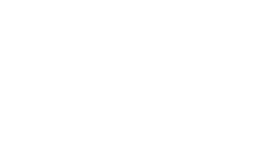 the business report