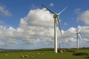 Expertise, investment ignites renewable revolution