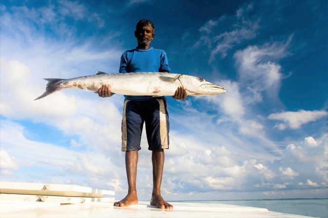 The world's most sustainable fisheries call for support
